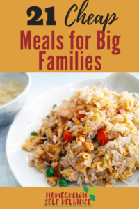 21 Cheap Meals for Big Families. Use these recipes when there's too much month at the end of the money!