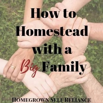 6 Hands Linked Together - How to Homestead with a Big Family