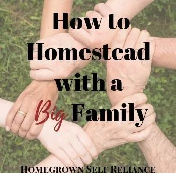 How To Win At Homesteading With A Big Family