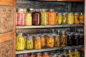 Canned food on shelves