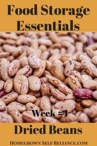 Food Storage Essentials - Dried Beans