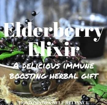Elderberry Elixir - A Delicious Immune Boosting Gift