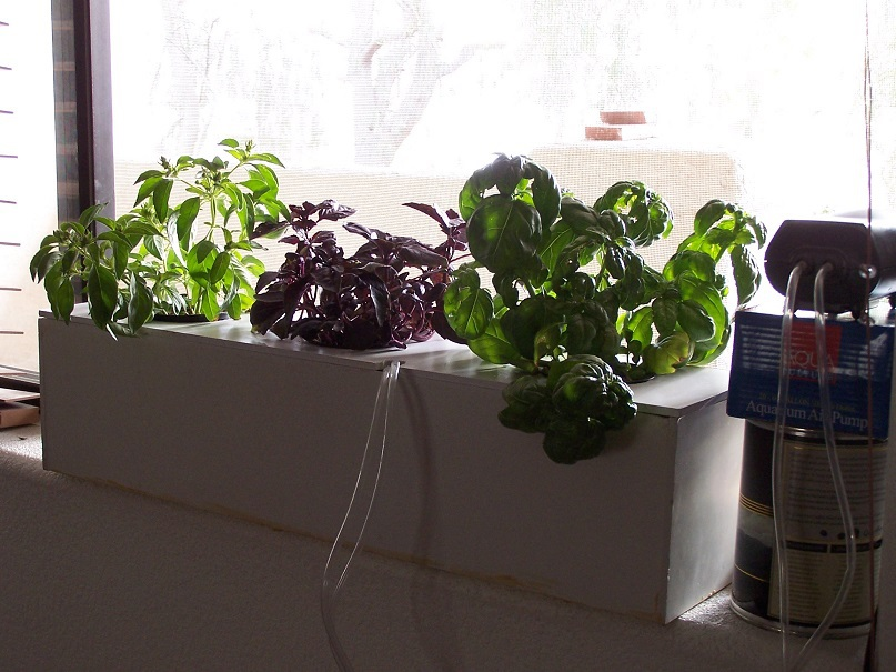 Make Your Own Hydroponic Grow Box