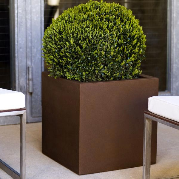 Get The Look Showcase Your Planters Home Infatuation