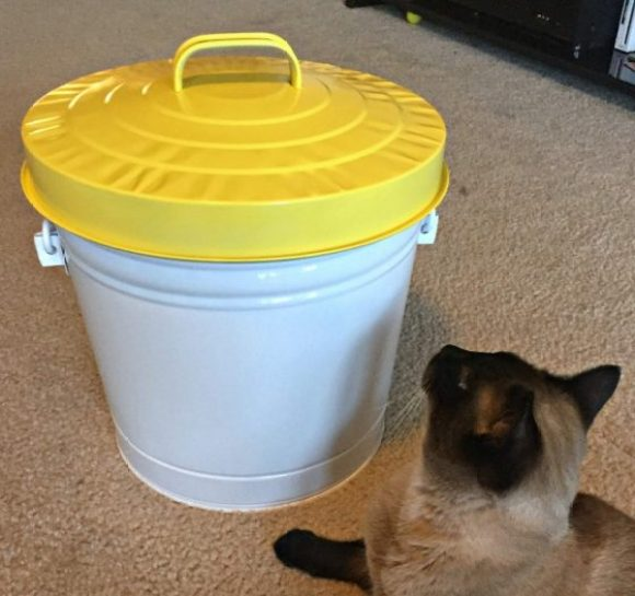 yellow-and-white-cat-food-storage