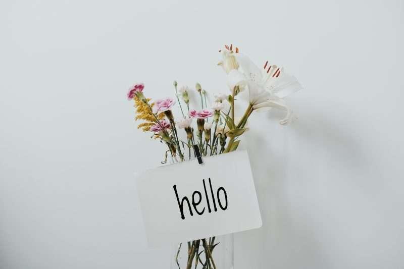hello flowers spring
