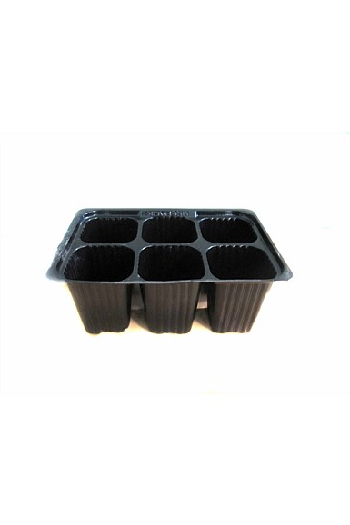 6 Cell Pack Growing Tray