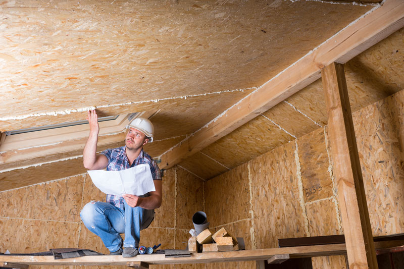 Whats the Average Cost of Crawl Space Encapsulation