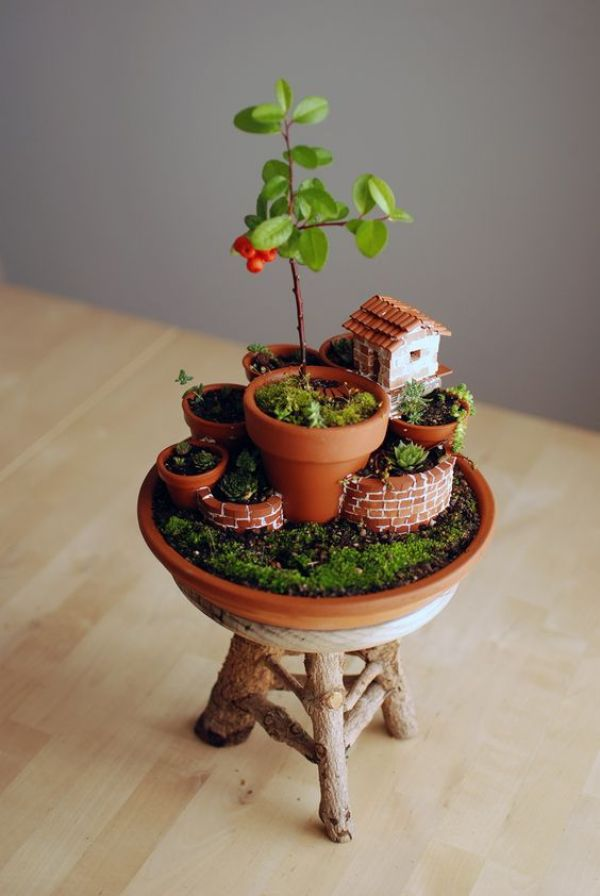 Mini Garden in a Mini Pot