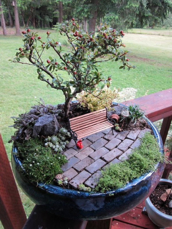 Miniature Garden in a Pot
