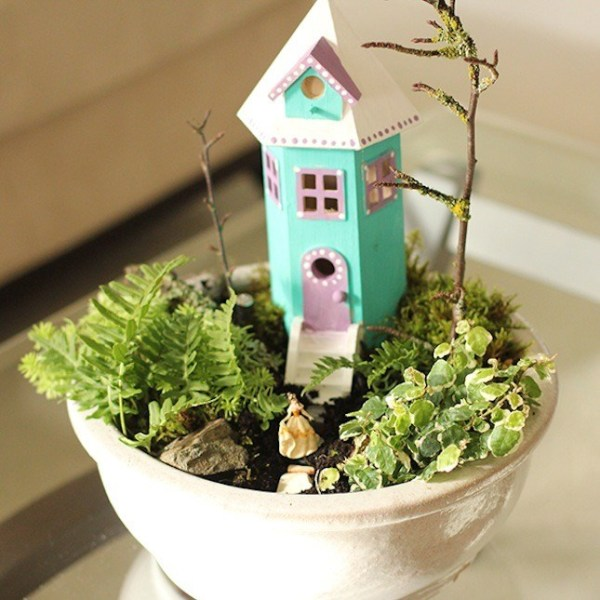 Small Indoor Fairy Garden