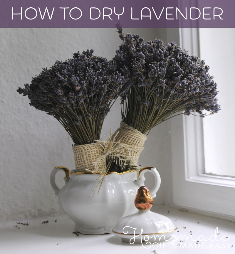 Easy Lavender Crafts