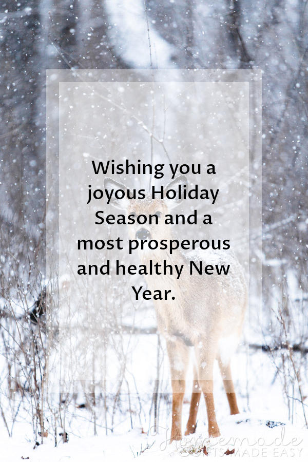 And Wishing Happy Quotes Family You And New Year Your Christmas Merry