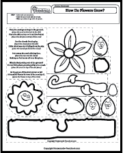 Science Worksheets Plants