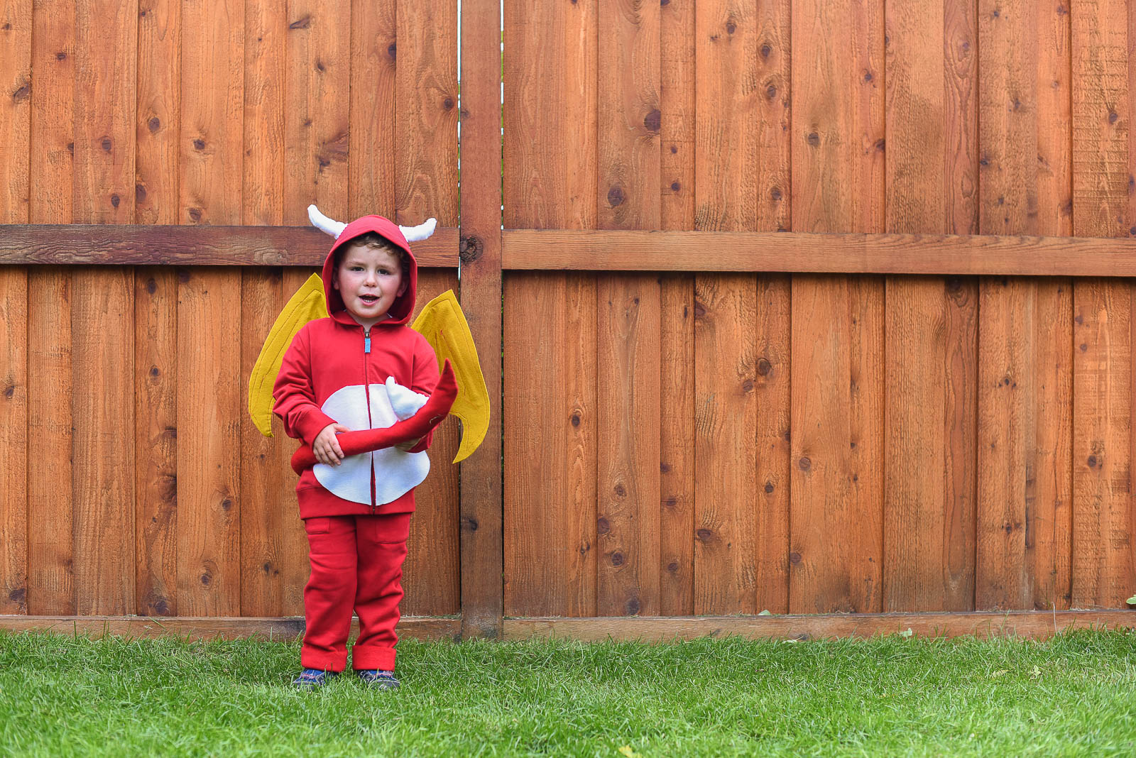 Dragons Love Tacos Costumes DIY