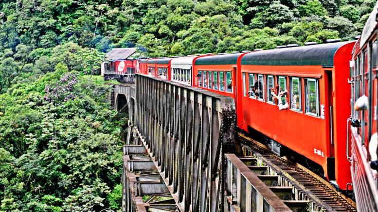 Beer Train Bodebrown Serra do Mar (3)