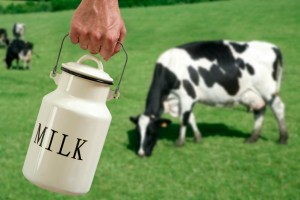 Health benefits of cow milk