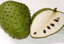 Health benefits of soursop