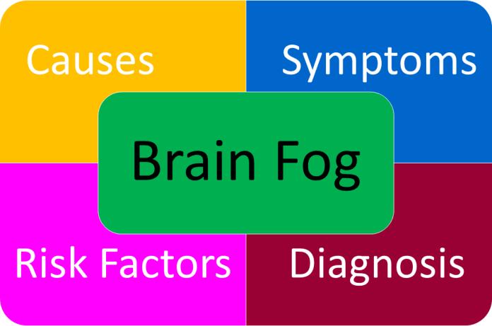 Brain vitamins for memory