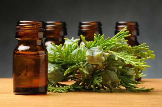 cypress essential oil