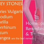 kidney-stone-homeopathic-remedy Find Your Homeopathic Remedy for Pancreatitis