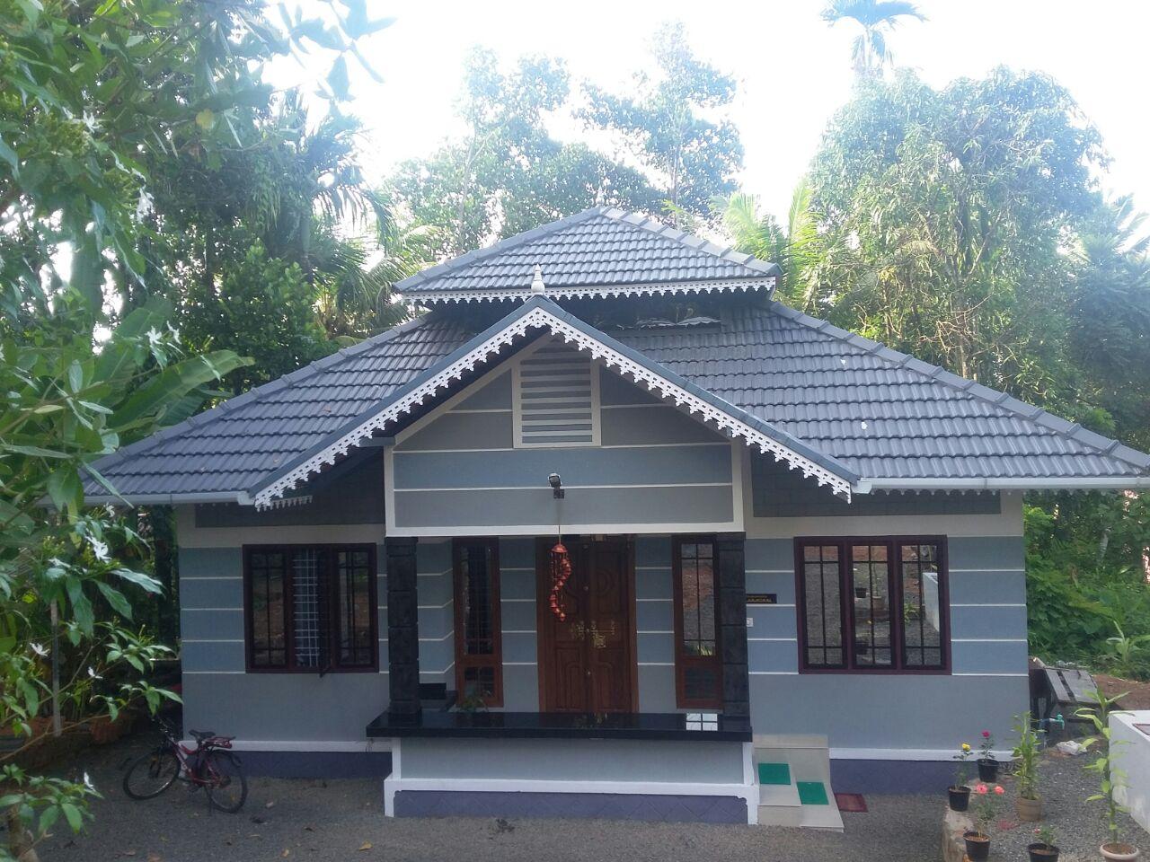 Kerala Ft Sq 700 Design Home
