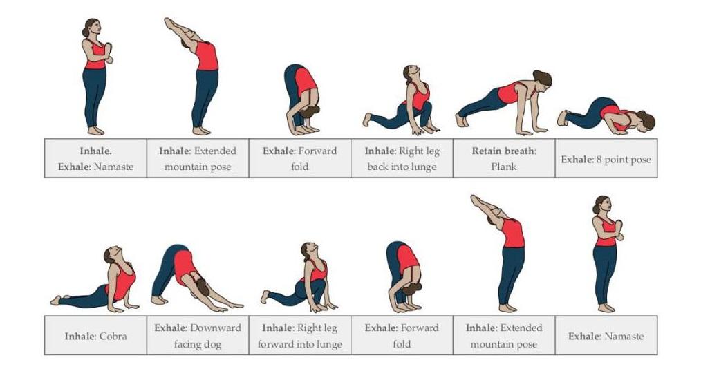 Yoga Pose -Surya Namaskar