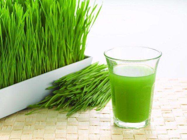 Wheatgrass and Juice