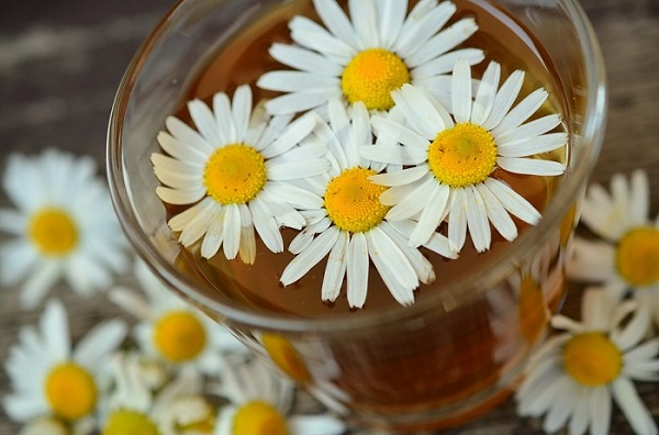 Chamomile Rinse To Cure Vaginal Itching