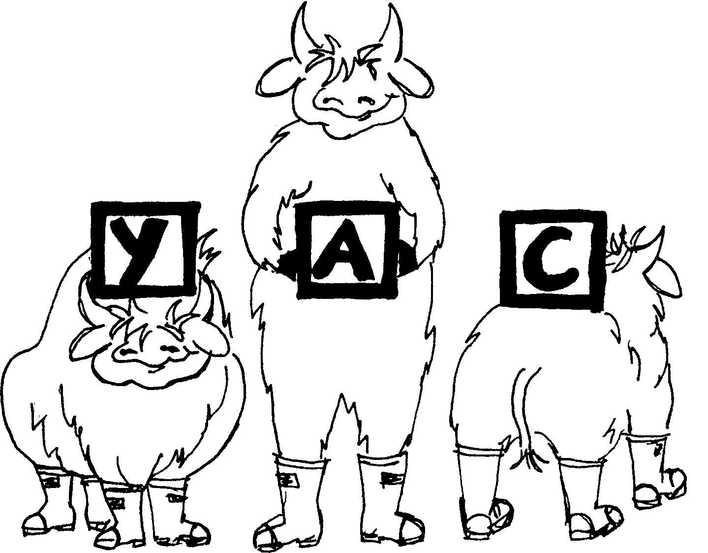 YAC Grant Program