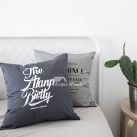 White Decorative Pillows Canvas Square Gray Couch Bed ...