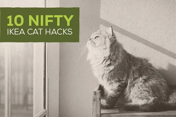 10 Nifty IKEA Cat Hacks