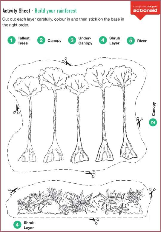 Homeschool Science: Rainforest for Kids Activities