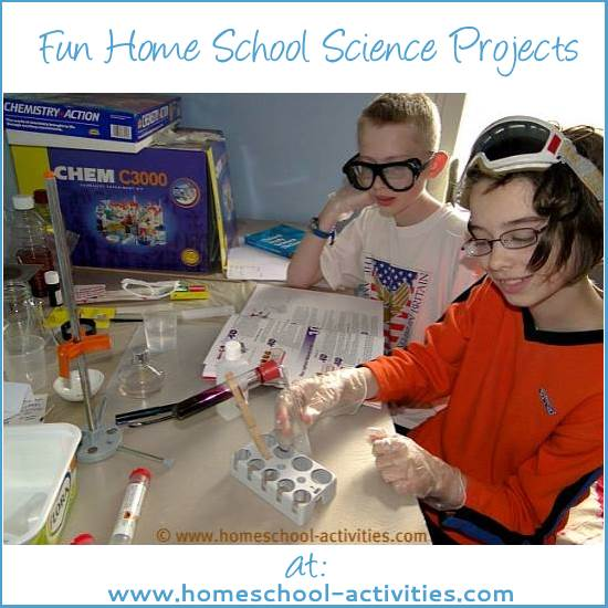 Science For School Home