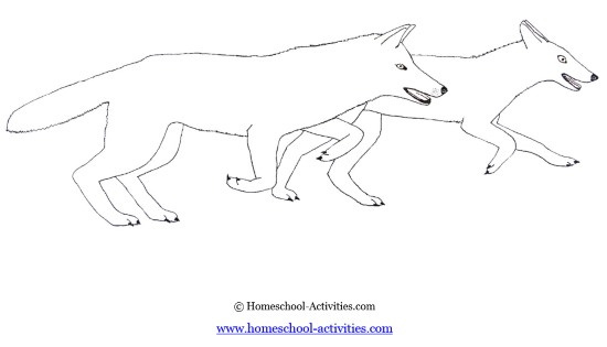 Wolf Coloring Pages: Art Projects For Kids