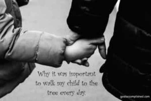 Mom holding child's hand: Why it was important to walk my strong willed child to the tree every day.