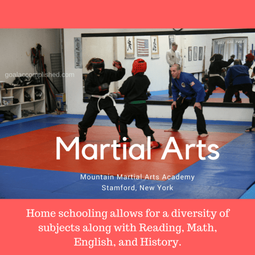 Two students are sparring in the Mountain Martial Arts Studio in Stamford, New York. It was so nice that we could pursue a variety of activities when we were home schooling.