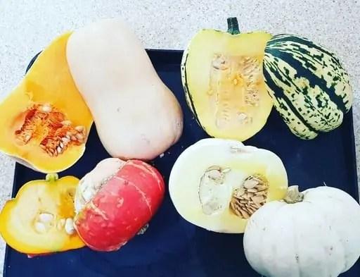 Easy Fall Autumnal Squash Recipe