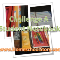 HELP: Challenge A Student Notebook