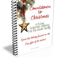 25 Day Family Christmas Devotional