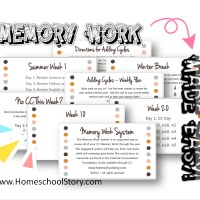 Memory Work System