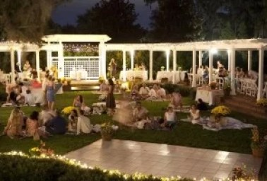 Lawn-Party-Wedding-Reception-600x400