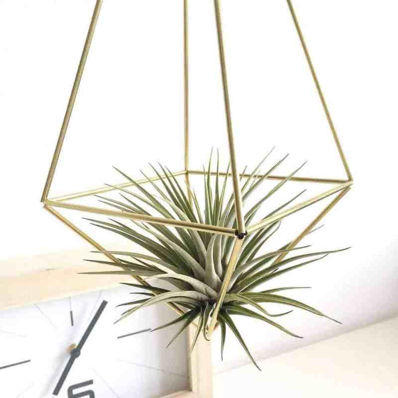 Himmeli drop medium van messing   Maak deze DIY Himmeli makkelijk zelf en hang ze op een leuke plek in jouw huis   www.homeseeds.nl