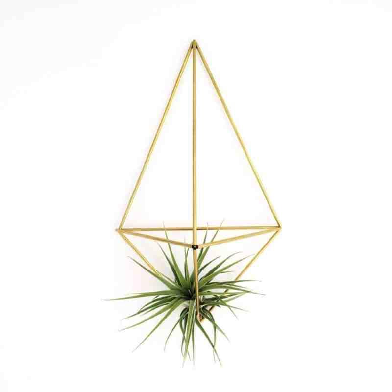 Deze draadzaken wallplanter Facet hang je makkelijk tegen elke muur in jouw huis! Plaats er een hip luchtplantje in en je huis is af!   www.homeseeds.nl   #luchtplantje #tillandsia #loveyourhome