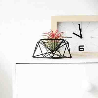 Draadzaken mars table planter himmeli voor in huis | 9 tips voor luchtplantjes in huis | www.homeseeds.nl