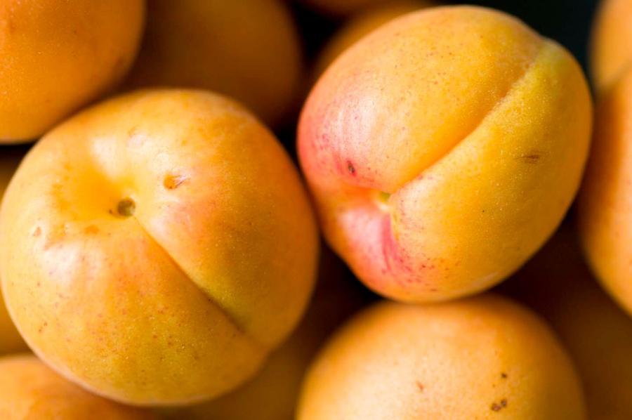 Apricot jam | Homesick Texan