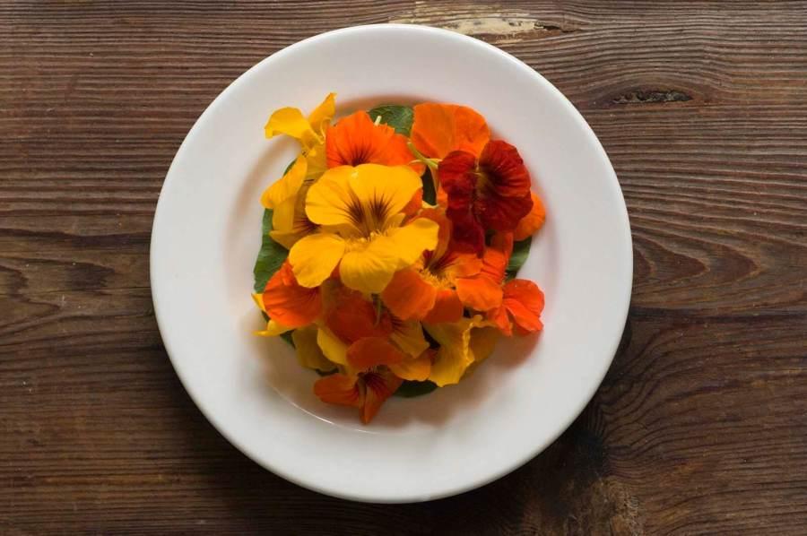 Texas potato salad with nasturtiums | Homesick Texan