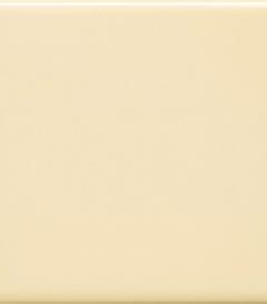 7.สีเนื้อ รุ่นธรรมดา ตราทีซีไอ