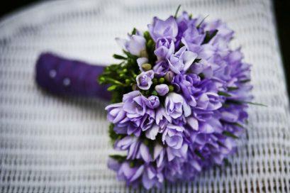 marriage-flower-purple-flowers-royalty-free-67571