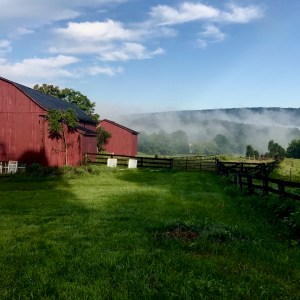 barns and misty mountains
